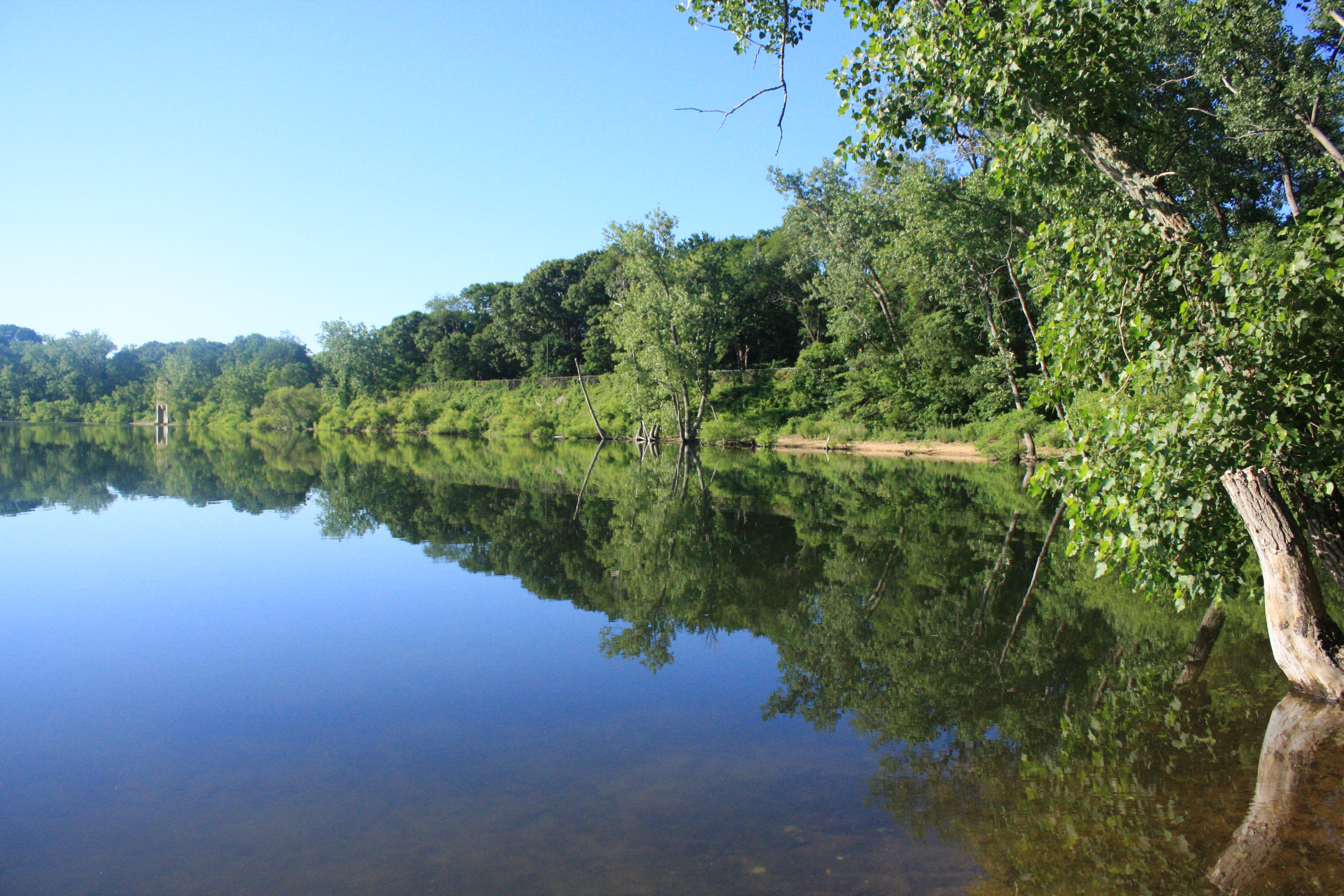 Mill River Photo
