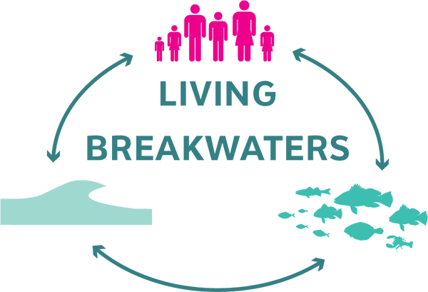 Rebuild By Design : Living Breakwaters